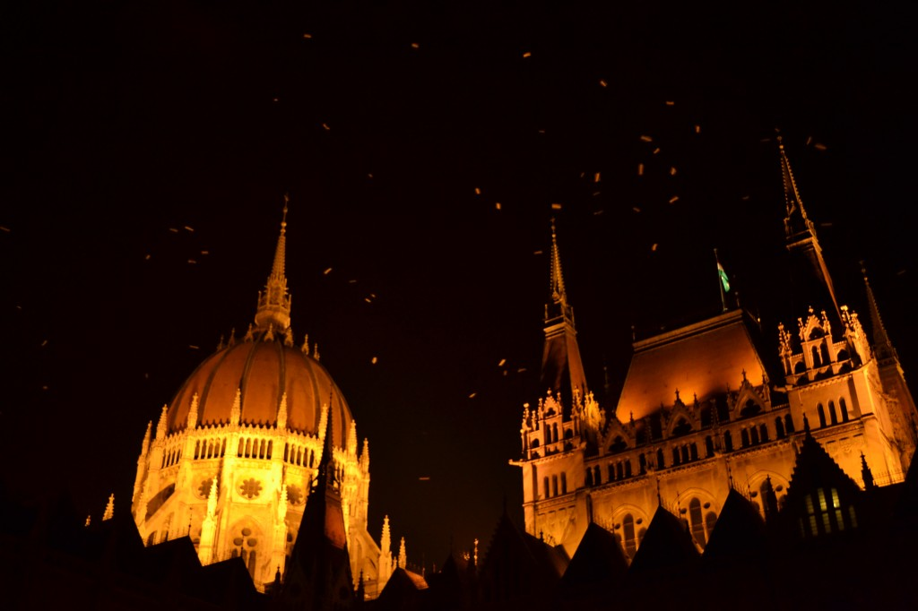 parlement de budapest la nuit oiseaux